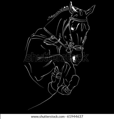vector horse jumping - stock vector