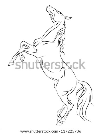 Vector horse rearing up sketch - stock vector