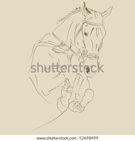 vector horse sketch - stock vector