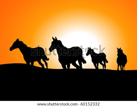 vector horses at sunset