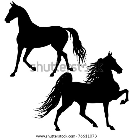 Vector horses silhouettes isolated on white background - stock vector