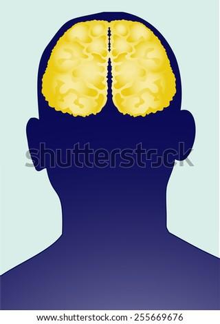 Vector human brain. - stock vector