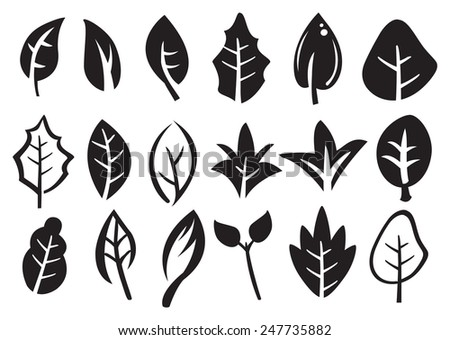 Vector icons of leaves in variety of shape designs isolated on white. - stock vector