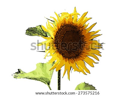 vector illustration beautiful bright flower sunflower bright summer day - stock vector