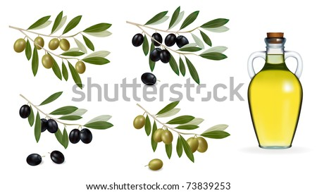 Vector illustration. Big set with green and black olives and bottle of olive oil. . - stock vector