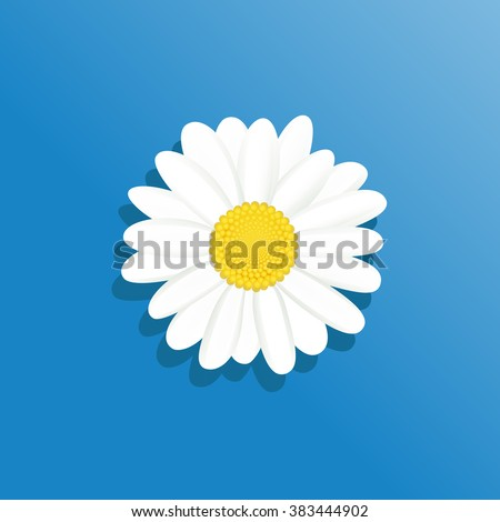 Vector Illustration chamomile flowers. Beautiful white daisy flower isolated. For greeting cards and invitations of wedding, birthday, mother's day and other seasonal holiday - stock vector