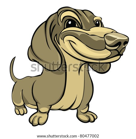 Vector illustration dachshund isolated on white background - stock vector