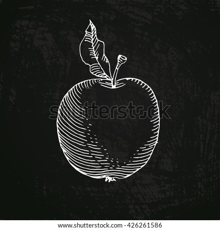 Vector illustration. Doodle image of apple, drawn in chalk on a blackboard - stock vector