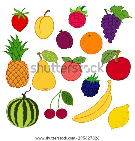 vector illustration: fruits and berries