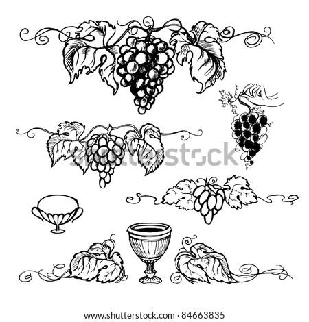 vector illustration grapes - stock vector