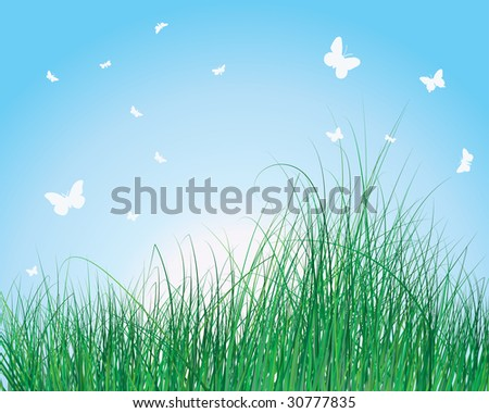 Vector illustration grass background for design use - stock vector