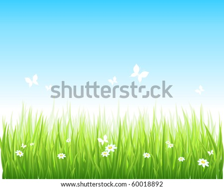 Vector illustration grassy green field and blue sky. - stock vector