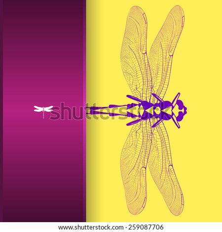Vector illustration, greeting card with colorful dragonfly.
