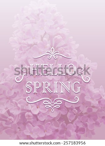 Vector illustration Hello Spring. Twig blossoming lilac  on light violet background and calligraphic design elements