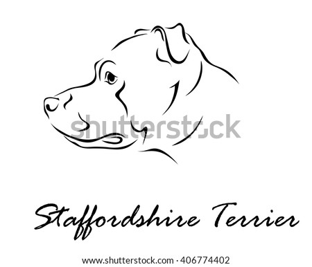 Vector illustration. Illustration shows a dog breed Staffordshire Terrier - stock vector