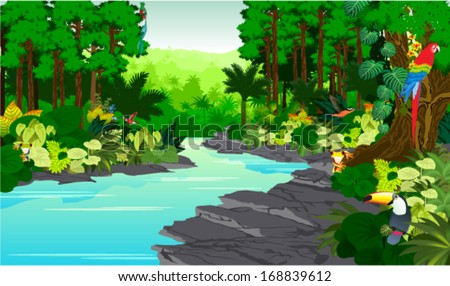 Vector Illustration Jungle rainforest with Frog, Toucan, quetzal, humming-birds and  Ara near river - stock vector