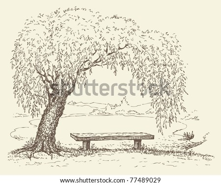 Vector illustration. Landscape sketch of the village form of the old wooden bench under a willow tree by the lake - stock vector