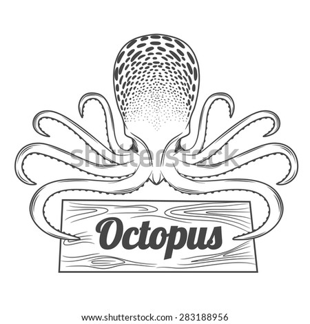 Vector illustration,octopus isolated on the white background. - stock vector