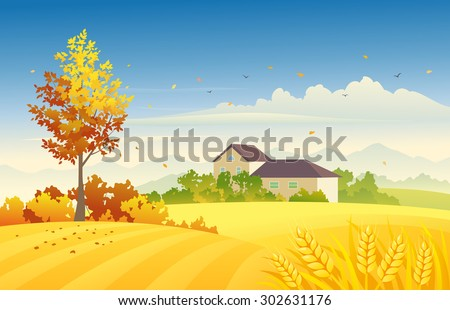 Vector illustration of a beautiful autumn farm scene with wheat fields and bright foliage tree - stock vector