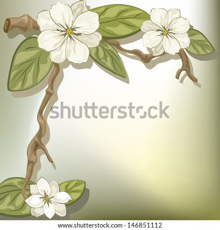 Vector illustration of a branch of a blooming magnolia