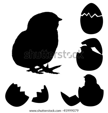 vector illustration of a chicken silhouette. Newborn chick with egg's  shell. - stock vector