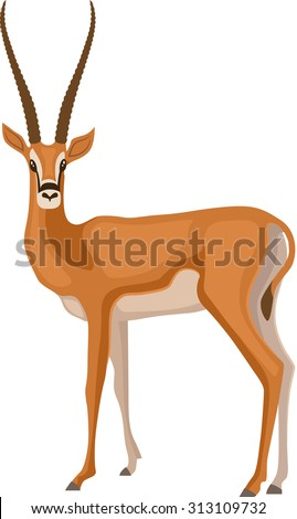 Vector Illustration of a Gazelle - stock vector