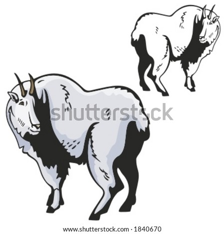Vector illustration of a goat.