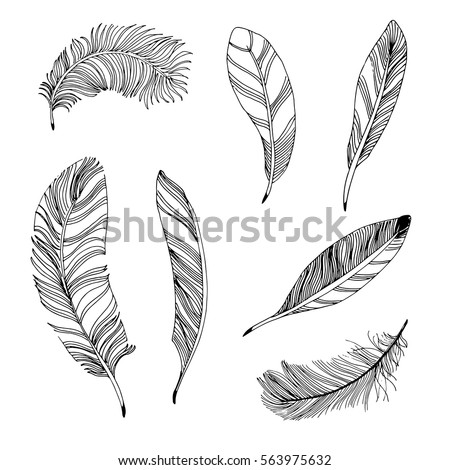 I0000HiGyOdkMUmI likewise Chicken feather together with B012F47MQ8 as well A Casual Modern Living Room Makeover Bria Hammel Fea30a17cc51e101 as well Gallery Home Interior Photo Plan. on dark gray living room