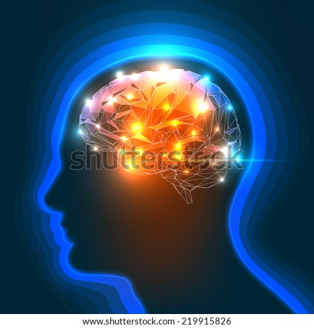Vector Illustration of a Human Head Silhouette with a Brain. - stock vector