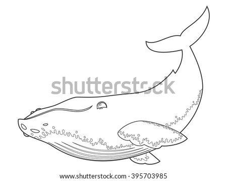 vector illustration of a humpback whale on white background with black outline for kids and coloring - Whale Outline