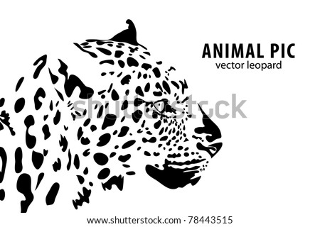 Cute Cat Coloring Pages together with Baby Elephant Coloring Pages also Tygrys 2 further  also Cat Coloring Pages For Adults. on leopard sitting on tree