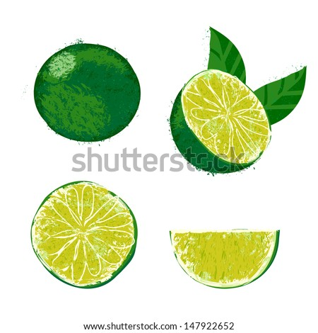Vector illustration of a lime fruit. The drawing imitates dry brush watercolor technique. Set of four images for any package design like juice boxes, jelly, jam, fruit tea, mojito drink, tequila party - stock vector