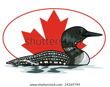 vector illustration of a loon in front of a Canadian maple leaf... background contained in clipping mask - stock vector