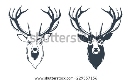 Vector Illustration of a Male Red Deer Head