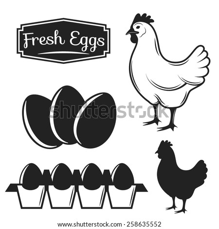 Vector Illustration of a Monochrome Chicken with Eggs. - stock vector