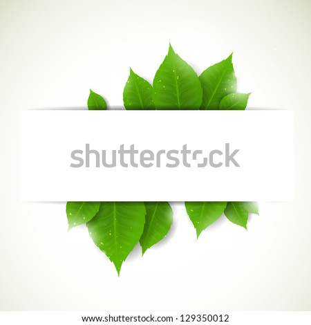 Vector Illustration of a Nature Background with Leaves - stock vector
