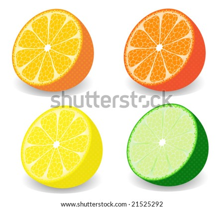 Vector illustration of a set of half citrus fruits - stock vector