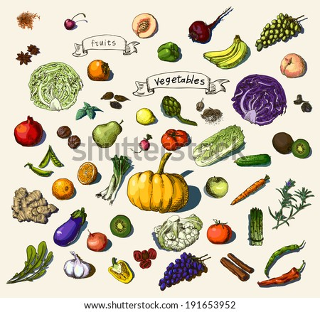 Vector illustration of a set of hand-painted vegetables, fruits