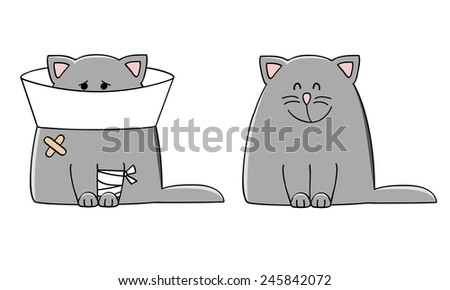 vector illustration of a sick cat and healthy cat - stock vector