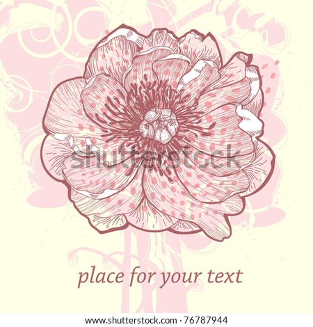 vector illustration of a single blooming peony on an abstract gentle background - stock vector
