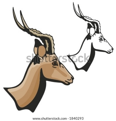 Vector illustration of an antelope. - stock vector
