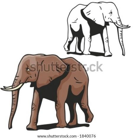 Vector illustration of an elephant. - stock vector