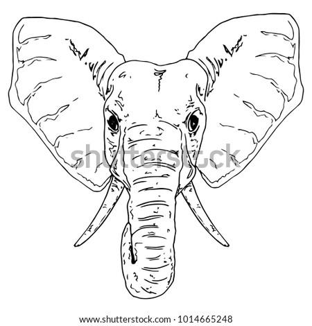 Vector Illustration Of An Elephant Cute Symbol Thailand Charming Face