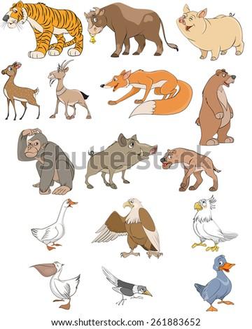 Vector illustration of animals and birds set - stock vector