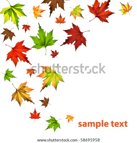 vector illustration of Autumn leaf fall - stock vector