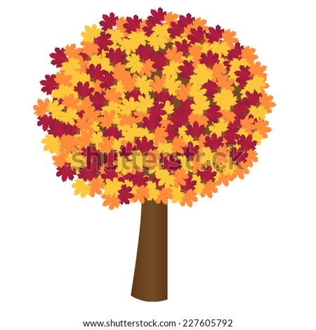 Vector illustration of Autumn tree - stock vector