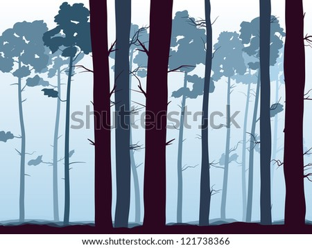 Vector illustration of  background with many pine trunks (coniferous forest) in the morning mist.