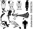 Vector illustration of Birds Design Set for variety design purposes. - stock vector
