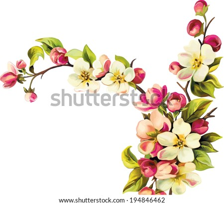 Vector illustration of Cherry blossom flowers with leaves. Tree branch - stock vector
