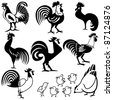 Vector illustration of chicken and rooster design. - stock photo